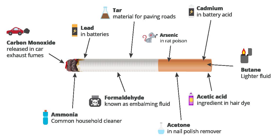 Cigarette Facts