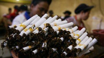 Clove Cigarette Disputes