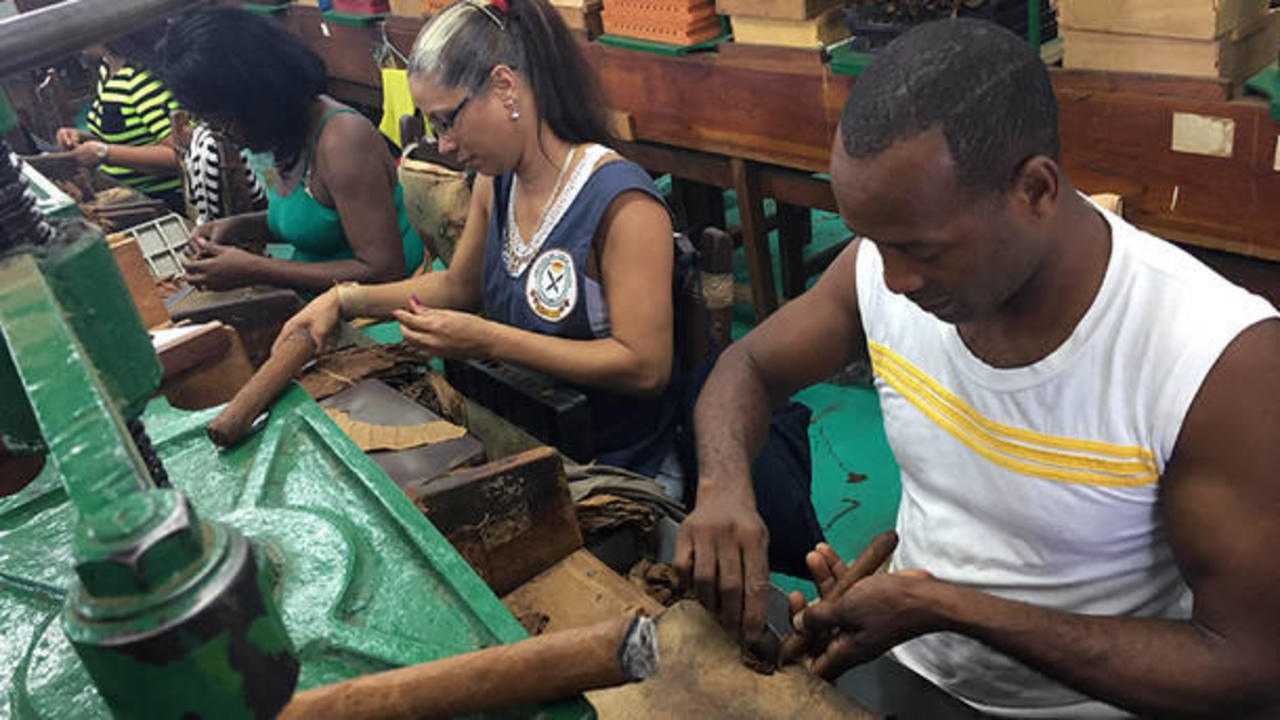 The Story of Cigars: from Havana to Jember