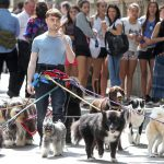 Daniel Radcliffe With Dog