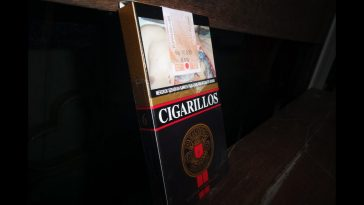 Djarum Cigarillos