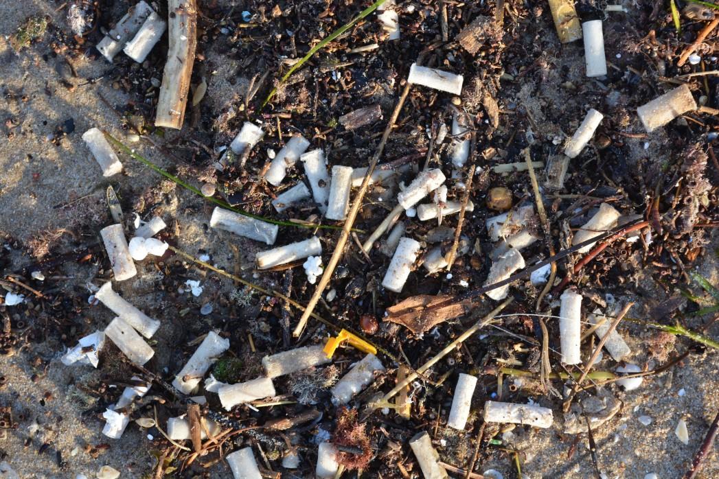 Non Biodegradable Cigarette Butts
