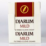 Djarum Mild Clove Cigar Review